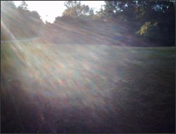 stray light