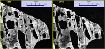 Coastal erosion and lake evolution between 1985 and 2005 near Cape Halkett