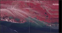 Landsat MSS data