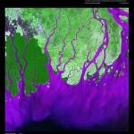 Ganges River Delta