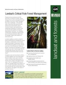 Forest fact sheet