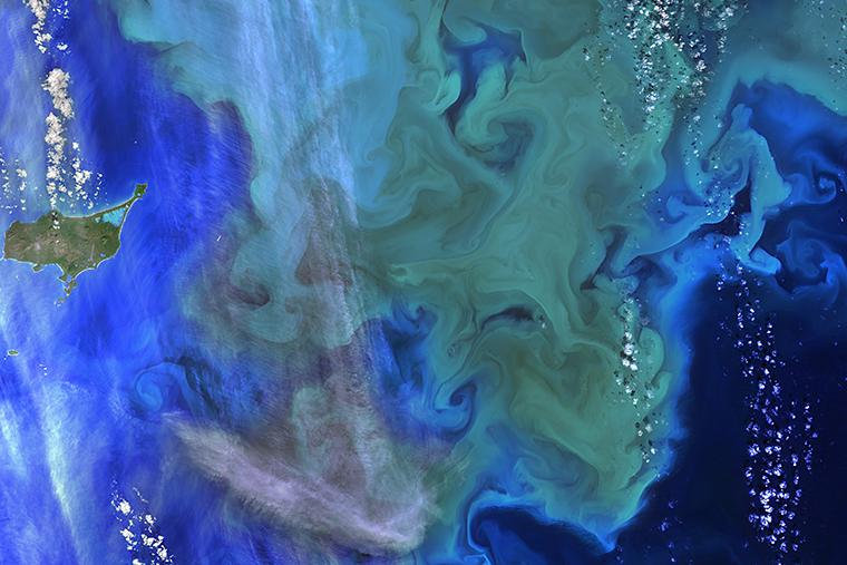 Phytoplankton bloom off the coast of Alaska