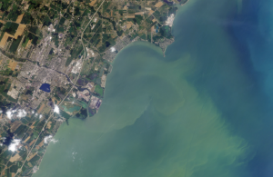 Landsat 8 image of 2014 Lake Erie algal bloom