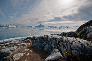 calved icebergs from Jakobshavn Isbrae glacier