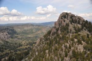 mountain topspruce-fir forest