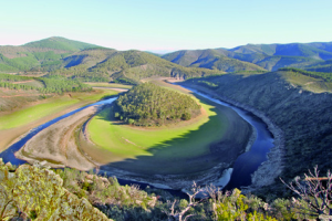 a river meander