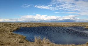 Douglas County, WA wetland