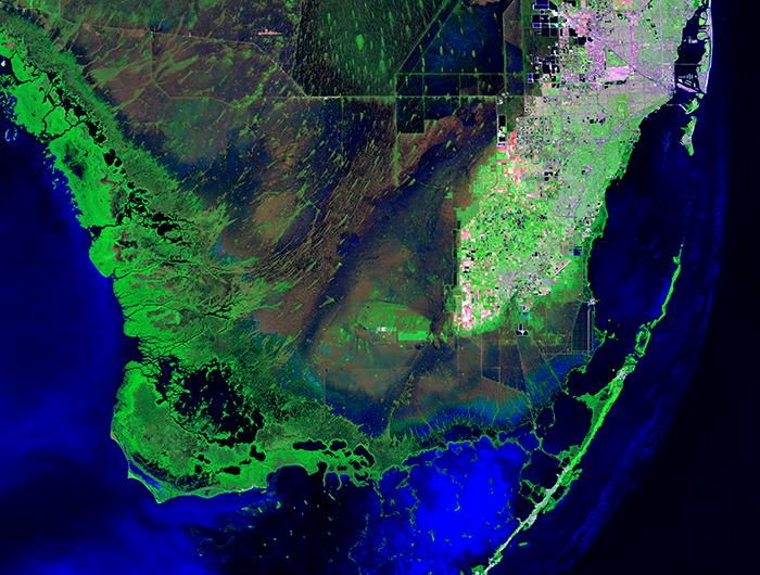 everglades false color image