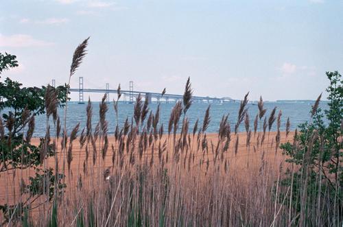 Looking towards the Chesapeake Bay Bridge