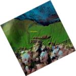 Landsat 8 image