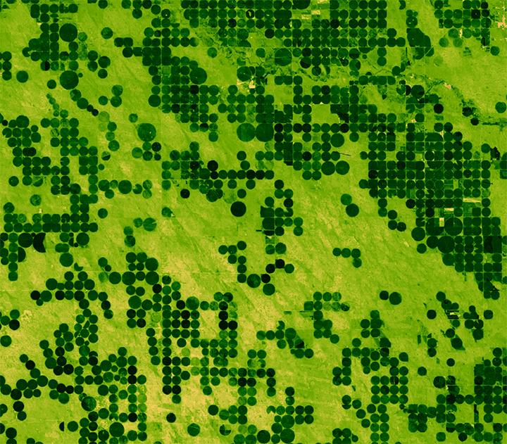 Landsat-derived Enhanced Vegetation Index