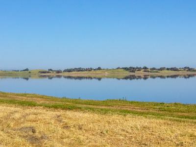 wetlands in Baylands Nature Preserve