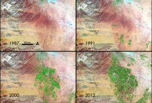 center-pivot irrigation crops in the Saudi desert