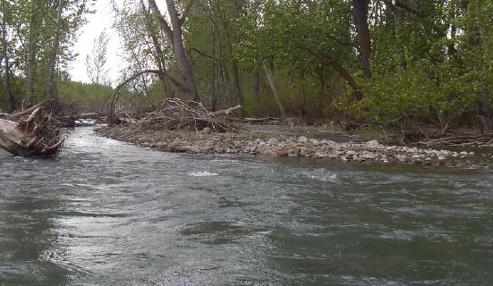 river in Yakima Co.