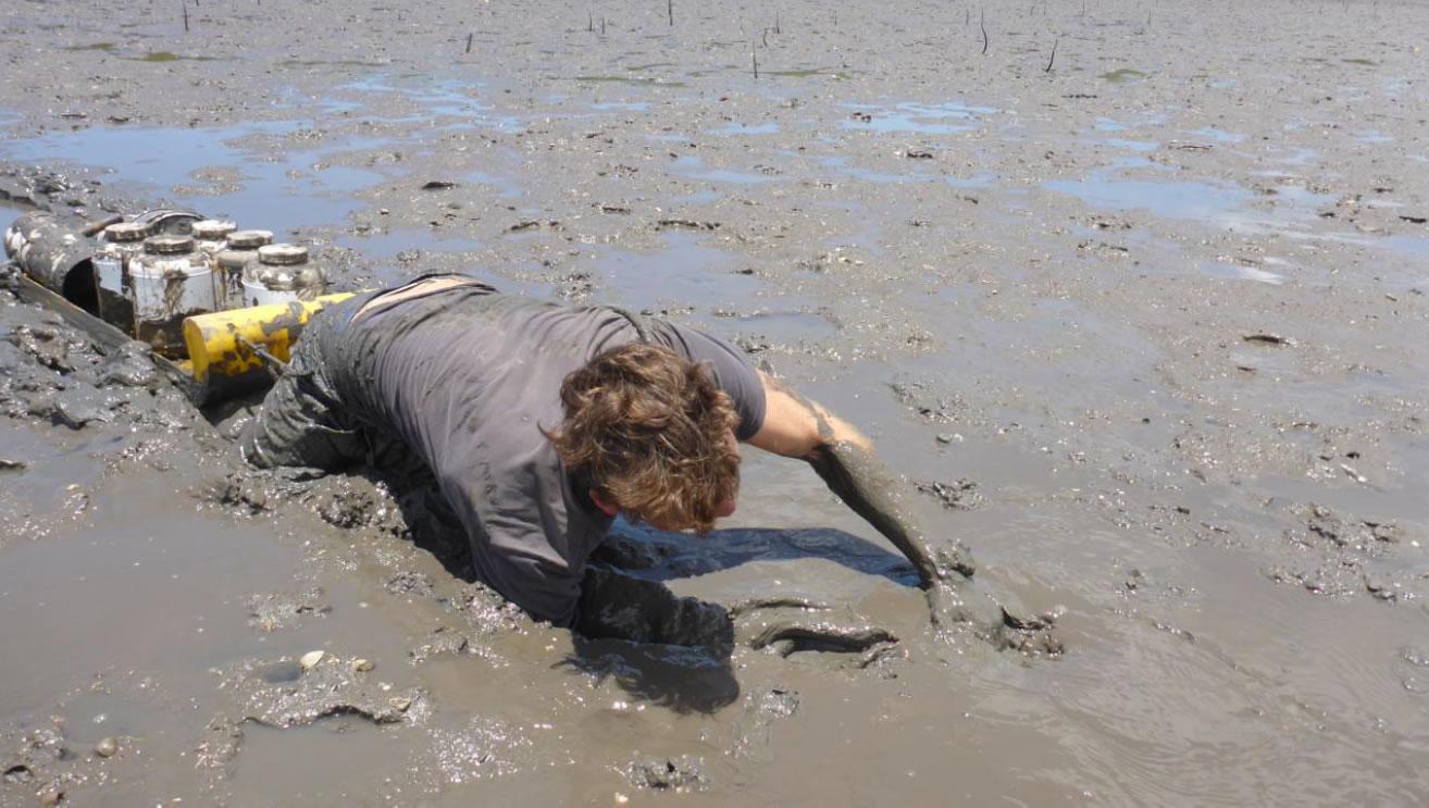 taking sediment samples
