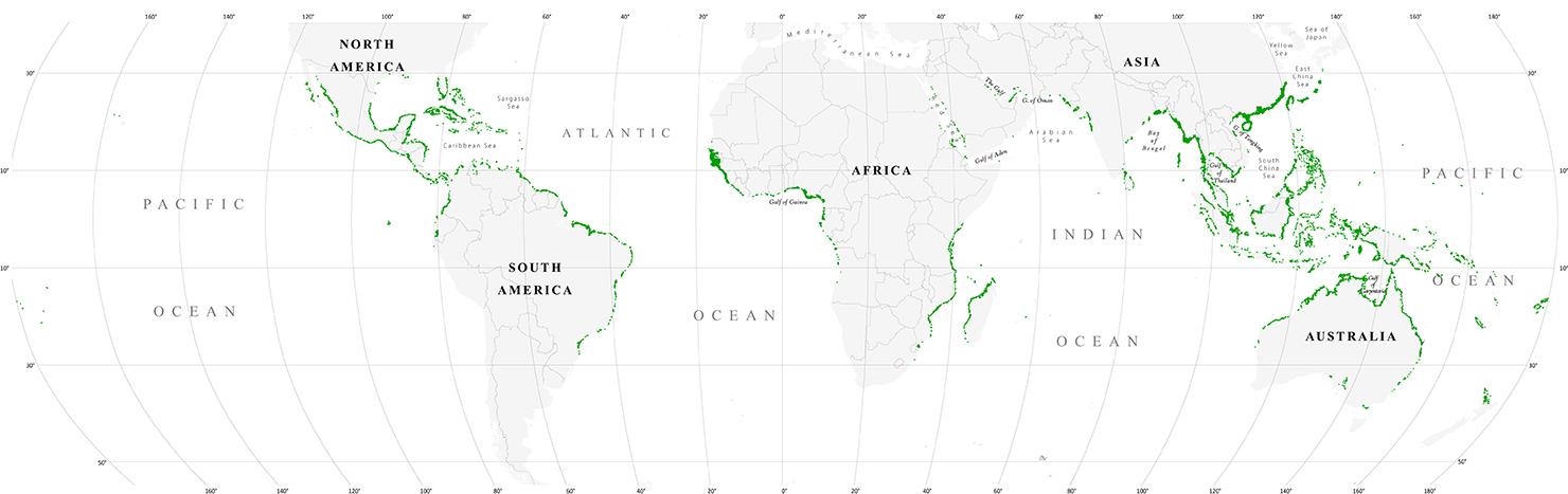 Mangrove map 2010
