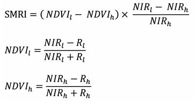 SMRI equations
