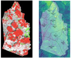 Habitat loss map