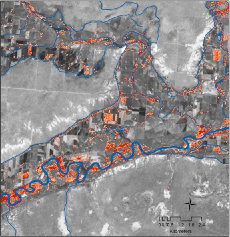 map of tamarisk in SE Colorado