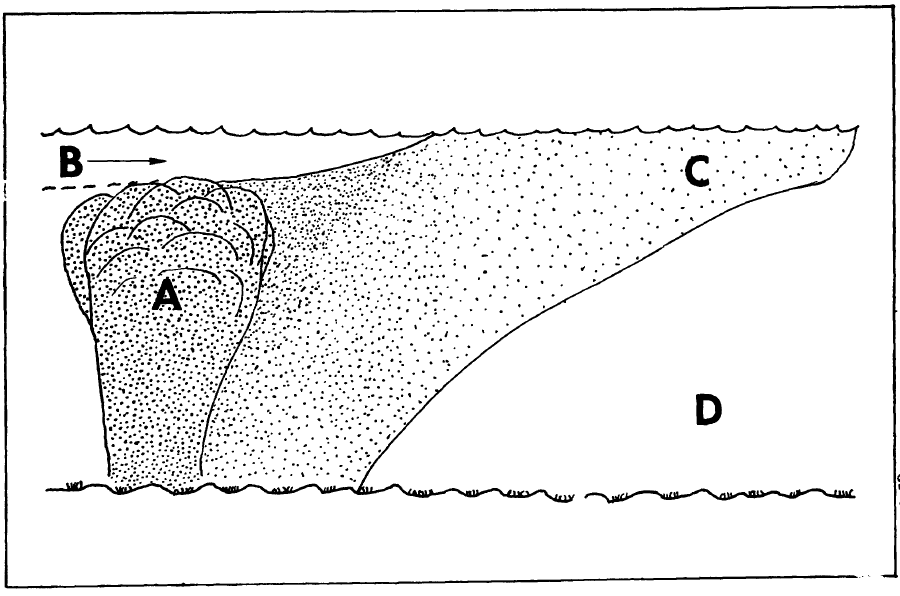Whiting diagram from 1975 expedition